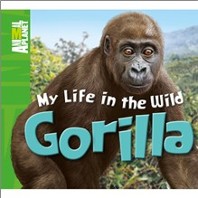 ANIMAL PLANET | MY LIFE IN THE WILD | GORILLA