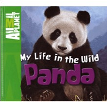 ANIMAL PLANET | MY LIFE IN THE WILD | PANDA