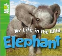 ANIMAL PLANET | MY LIFE IN THE WILD | ELEPHANT