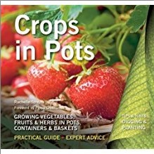 CROPS IN POTS | Growing Vegetables Fruits & Herbs In Pots Containers & Baskets