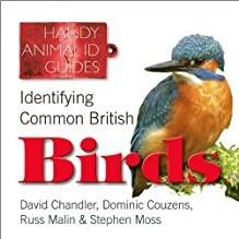 HANDY ANIMAL ID GUIDES   IDENTIFYING COMMON BRITISH BIRDS