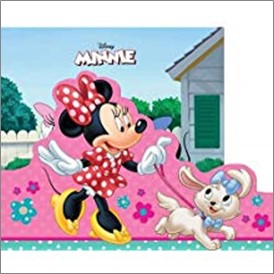 DISNEY MINNIE | MY STORYBOOK LIBRARY