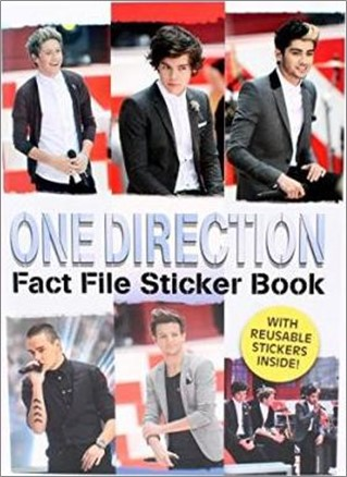 ONE DIRECTION | FACT FILE STICKER BOOK