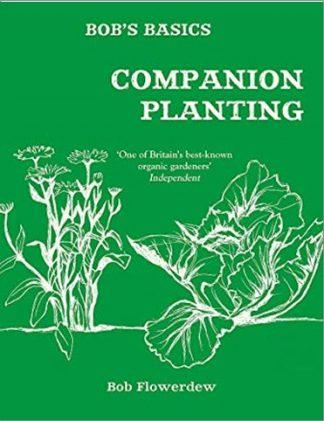 BOB'S BASICS | COMPANION PLANTING