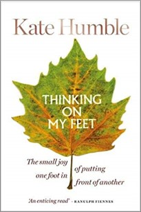 THINKING ON MY FEET | THE SMALL JOY OF PUTTING ONE FOOT IN FRONT OF ANOTHER