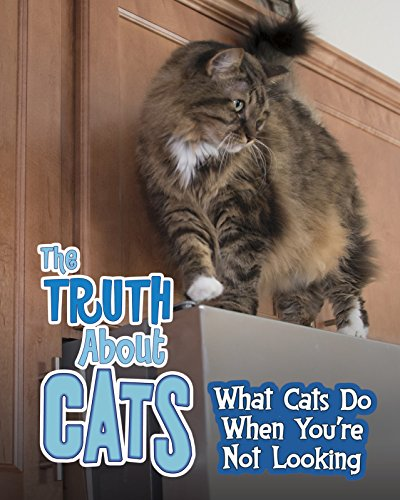 TRUTH ABOUT CATS | WHAT CATS DO WHEN YOU'RE NOT LOOKING
