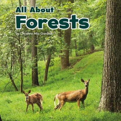 ALL ABOUT | FORESTS