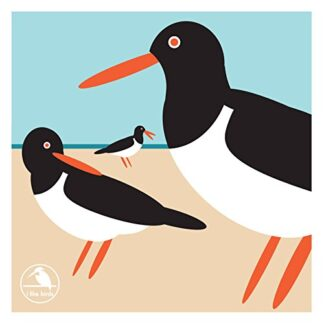 I LIKE BIRDS | OYSTER CATCHER BOXED NOTECARDS