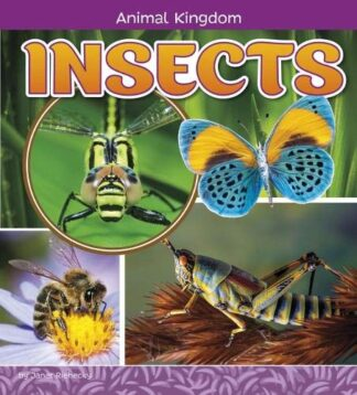 ANIMAL KINGDOM | INSECTS