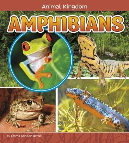 ANIMAL KINGDOM | AMPHIBIANS
