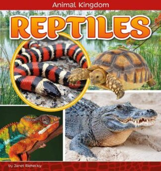 ANIMAL KINGDOM | REPTILES