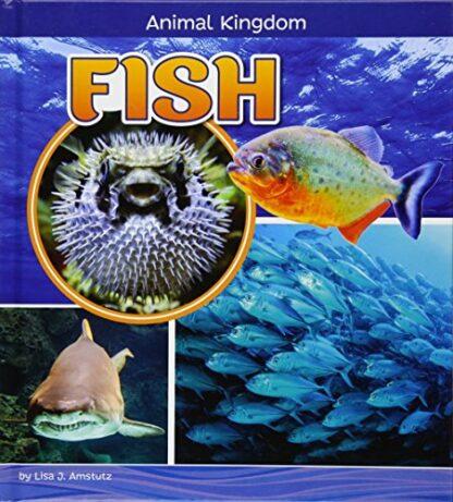 ANIMAL KINGDOM | FISH