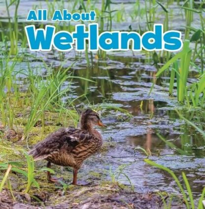 ALL ABOUT | WETLANDS