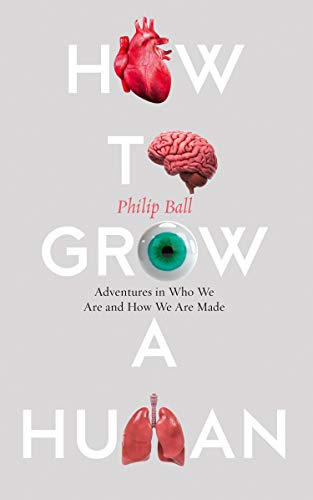 HOW TO GROW A HUMAN | ADVENTURES IN WHO WE ARE AND HOW WE ARE MADE (H/B)