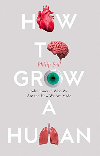 HOW TO GROW A HUMAN | ADVENTURES IN WHO WE ARE AND HOW WE ARE MADE (P/B)